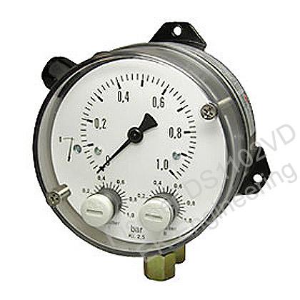 Fischer DS1102VD - Flender / Siemens Volumetric Flow Meter