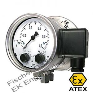 Fischer DS21 - ATEX Industrial DP Switch - thermal oil, water